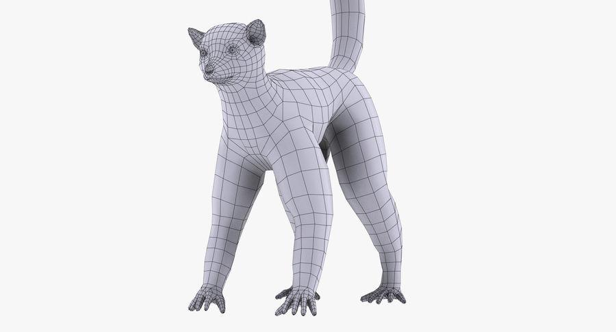 Lemur royalty-free 3d model - Preview no. 9