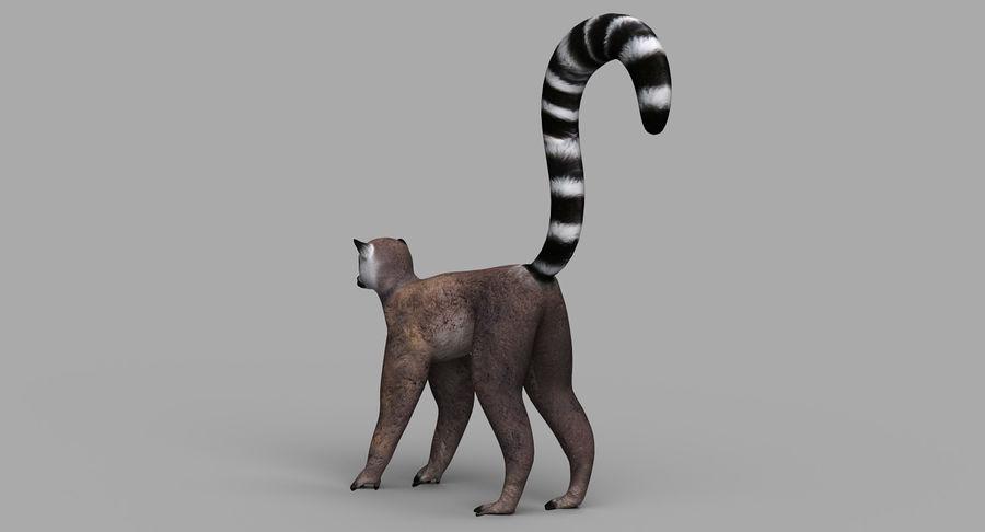 Lemur royalty-free 3d model - Preview no. 6