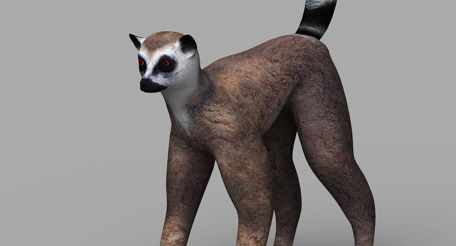 Lemur royalty-free 3d model - Preview no. 8