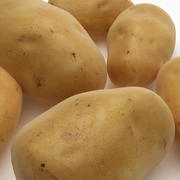 potatis 3d model