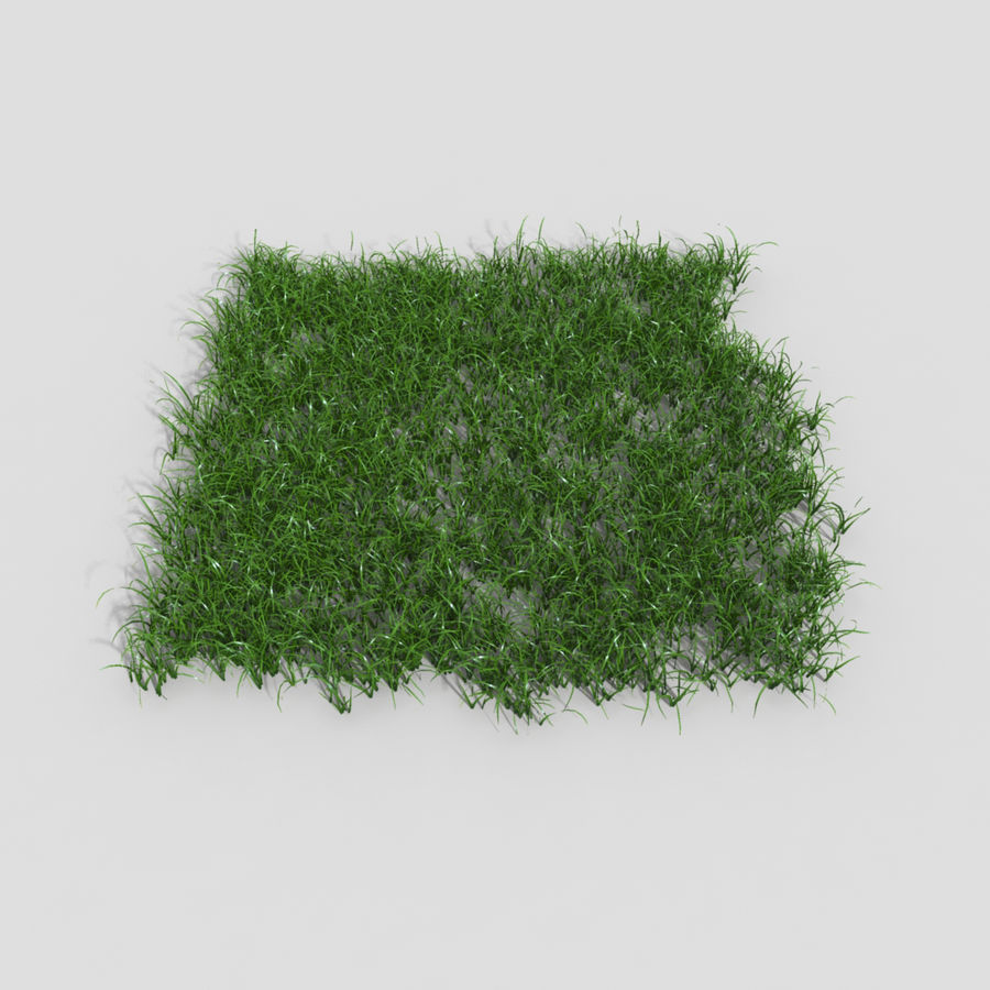 植物草 royalty-free 3d model - Preview no. 1