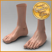 Human Female Feet 3d model