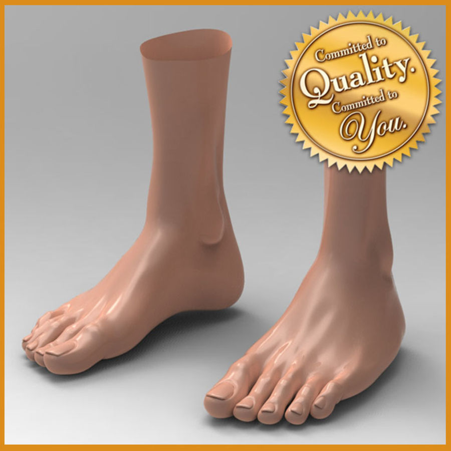 human female feet 3d model $18 - .obj .max .ma .fbx .3ds - free3d