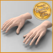 Human Female Hands 3d model