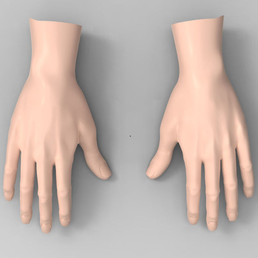 Mani femminili umane royalty-free 3d model - Preview no. 3