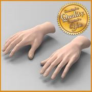 Mãos Femininas Humanas 3d model