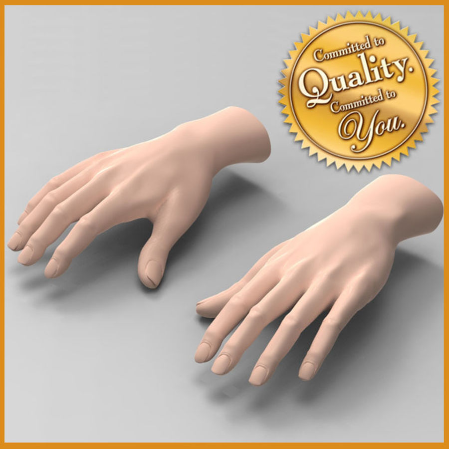 Mani femminili umane royalty-free 3d model - Preview no. 1