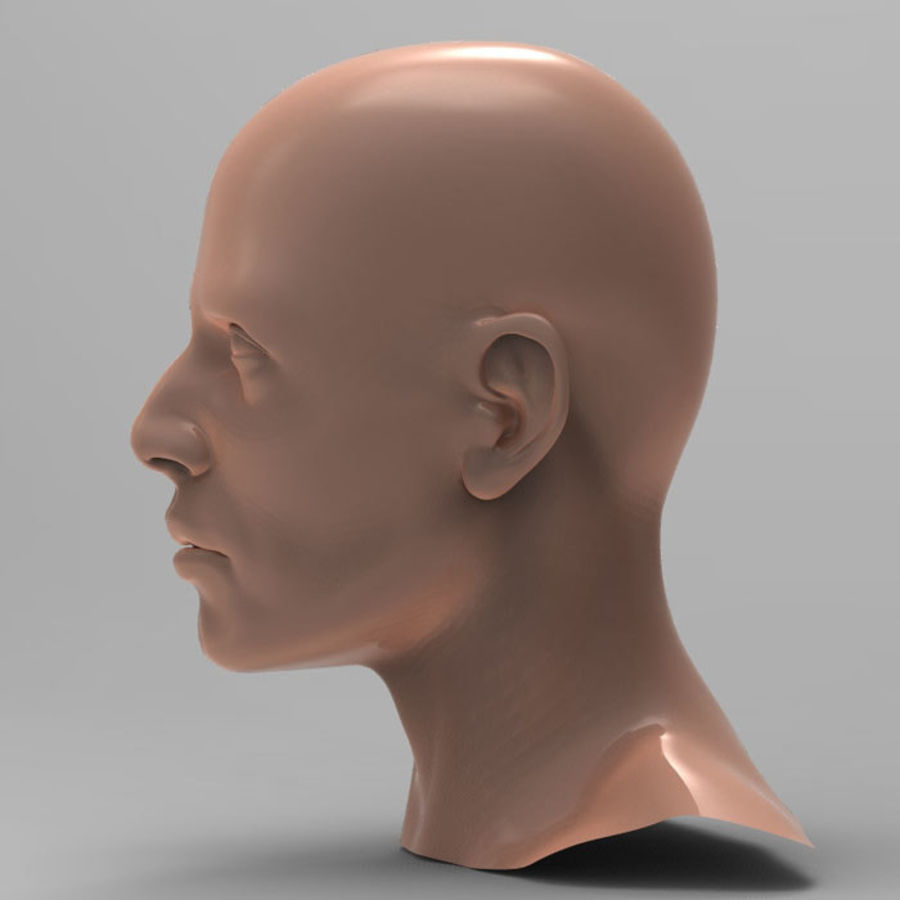 Cabeza masculina humana royalty-free modelo 3d - Preview no. 4