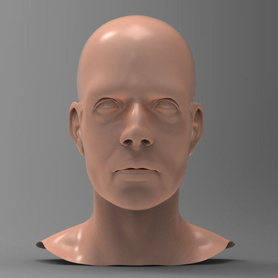 Cabeza masculina humana royalty-free modelo 3d - Preview no. 2