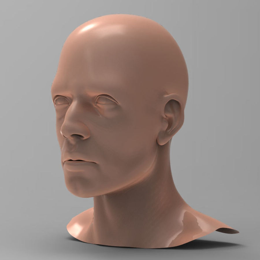 Cabeza masculina humana royalty-free modelo 3d - Preview no. 3