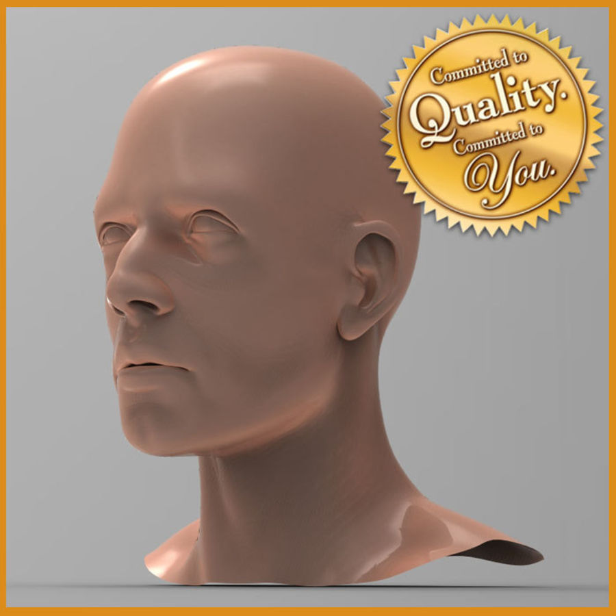 Cabeza masculina humana royalty-free modelo 3d - Preview no. 1