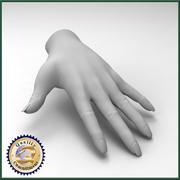 Vrouwelijke hand 3d model
