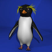 Pingwin Rockhopper 3d model