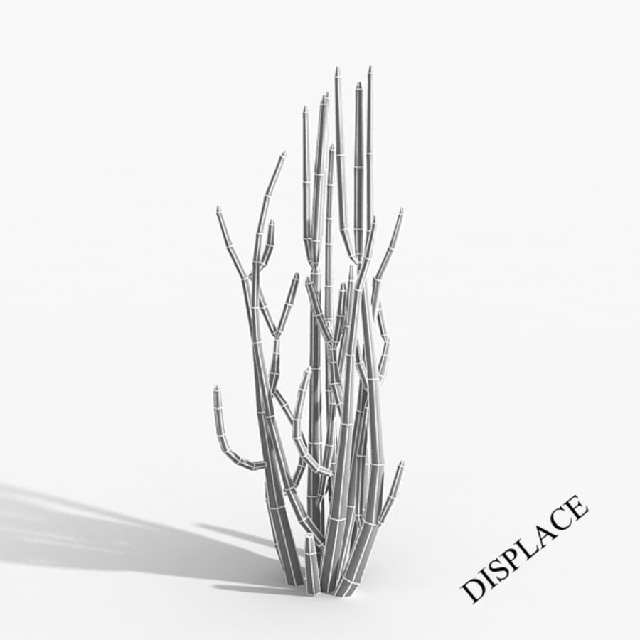Planter un arbre de cactus royalty-free 3d model - Preview no. 2