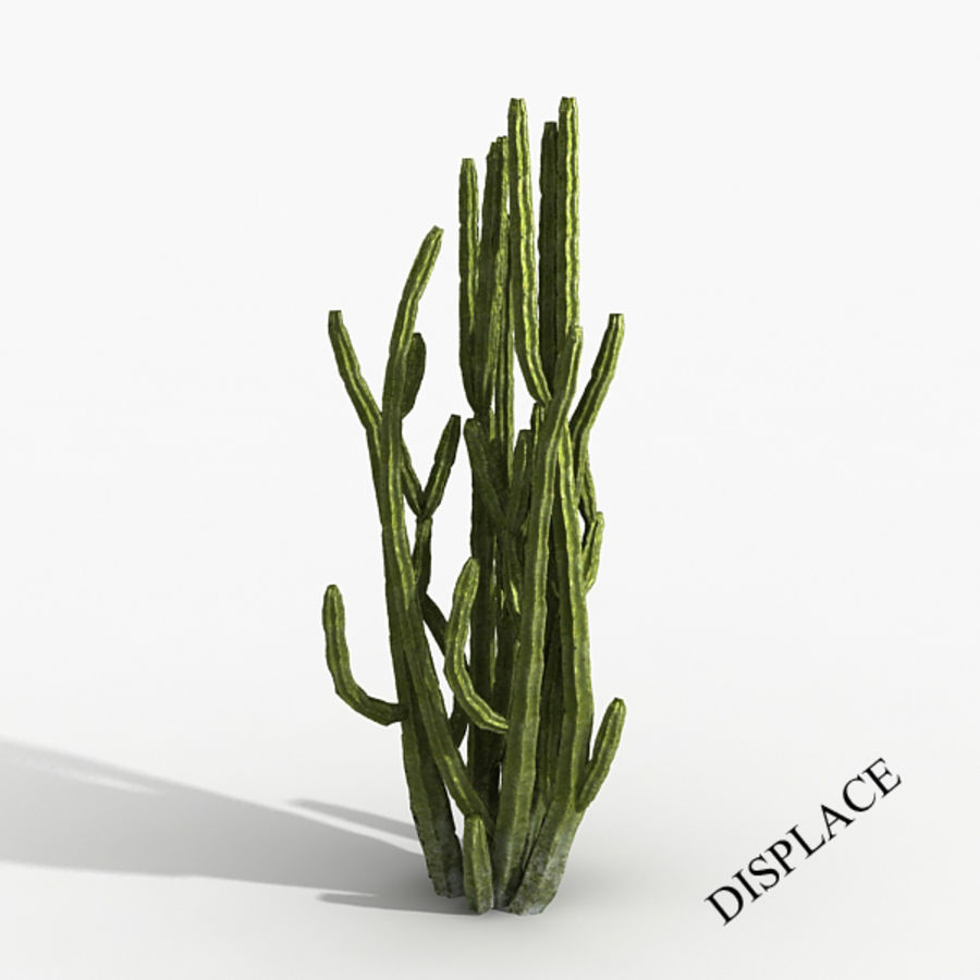 Planter un arbre de cactus royalty-free 3d model - Preview no. 1
