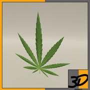 weed 3d model
