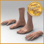 Human Female Feet Hand [Combo Pack] 3d model