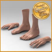 Human Female Feet Hand [Combo Pack] 3d model
