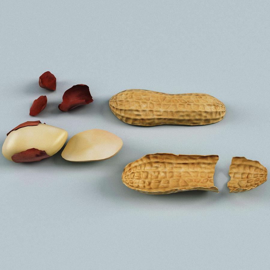 Peanut V2 royalty-free 3d model - Preview no. 2