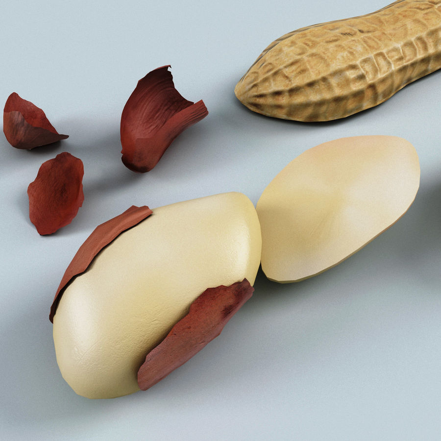 Peanut V2 royalty-free 3d model - Preview no. 7