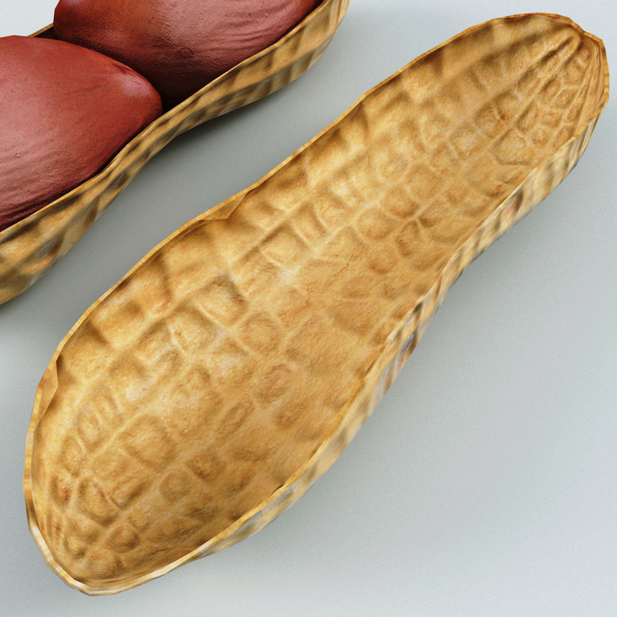 Peanut v1 royalty-free 3d model - Preview no. 6