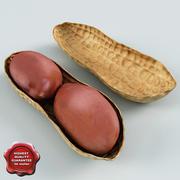 Peanut v1 3d model