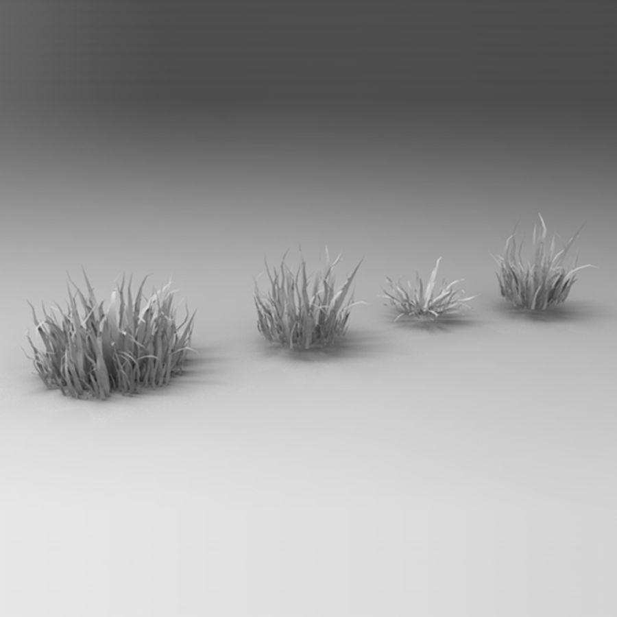 Rośliny wodne royalty-free 3d model - Preview no. 8