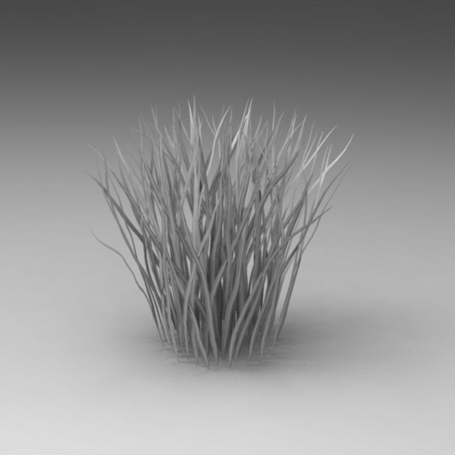 Rośliny wodne royalty-free 3d model - Preview no. 2