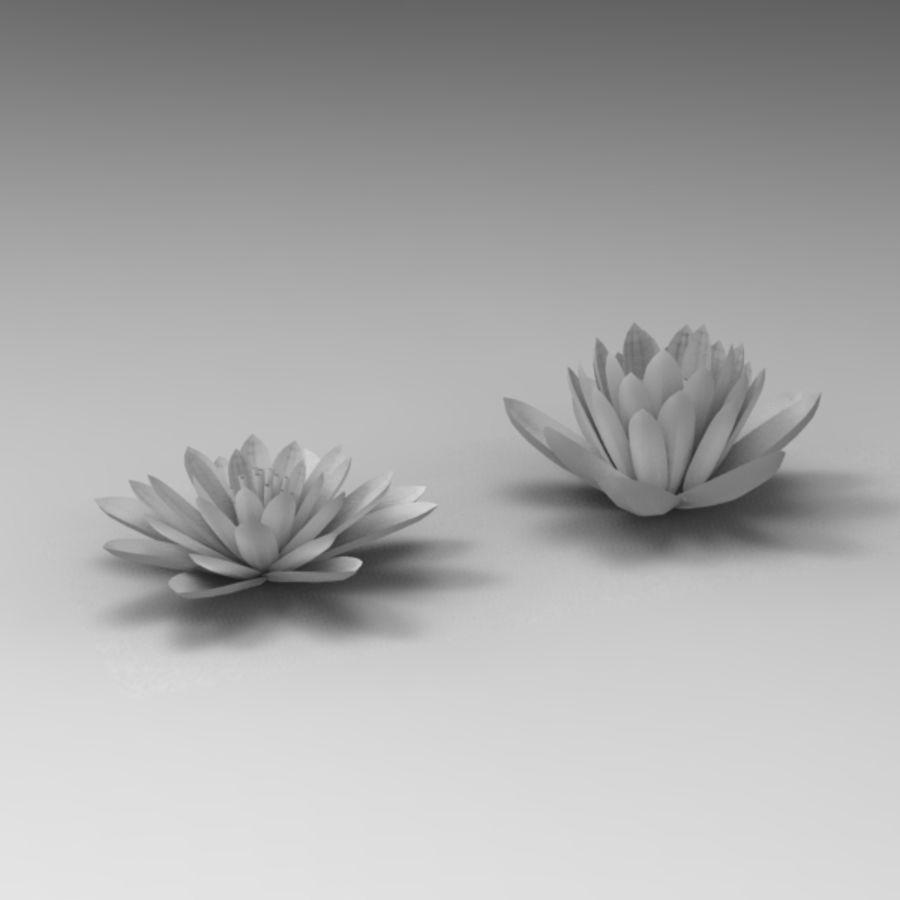 Rośliny wodne royalty-free 3d model - Preview no. 7