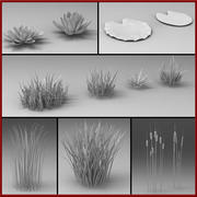 Waterplanten 3d model