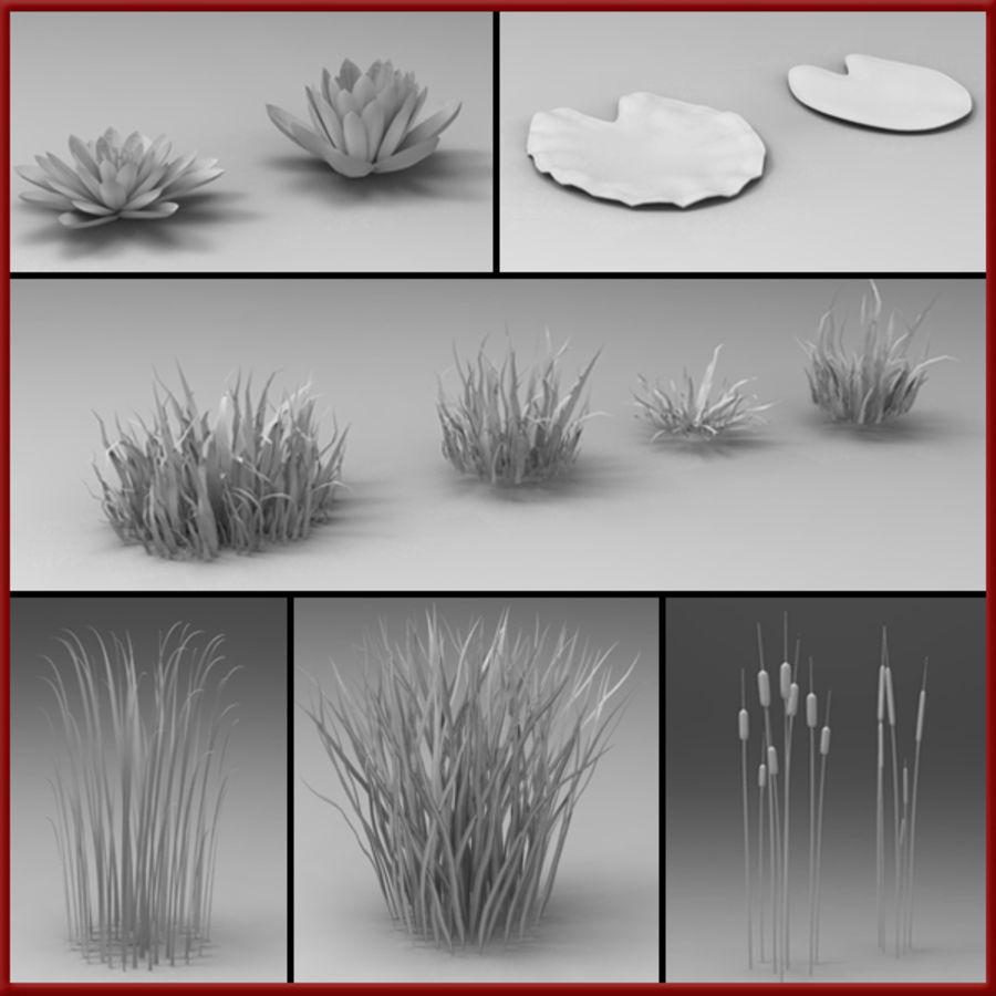 Rośliny wodne royalty-free 3d model - Preview no. 1
