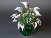 Arum lilies 3d model