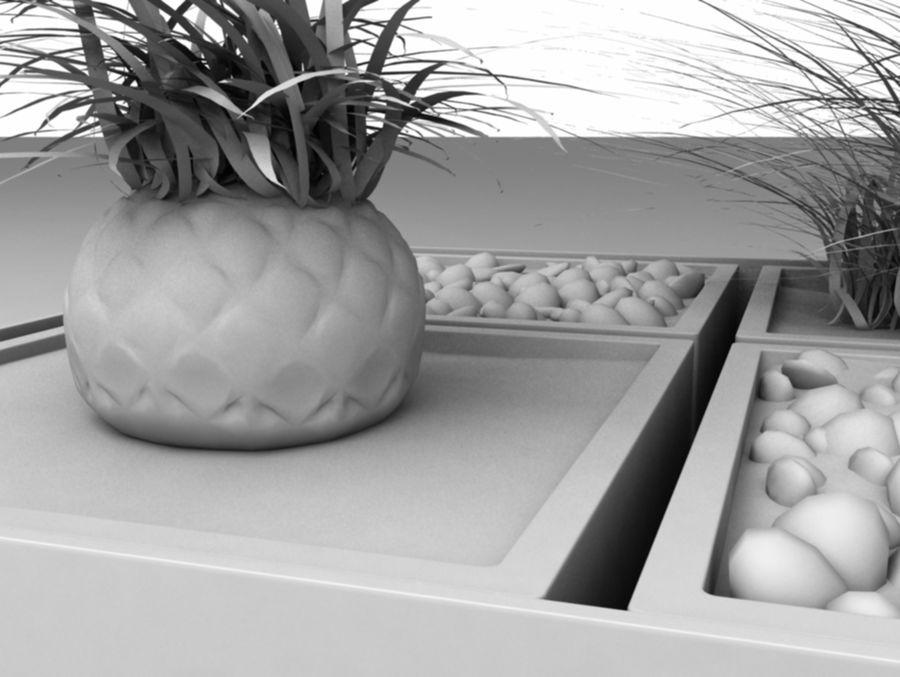 house plants ,decoration,pot plant royalty-free 3d model - Preview no. 4