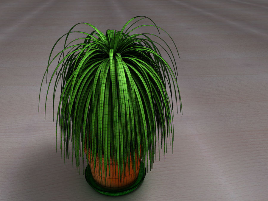 Palm Tree Plant Pot royalty-free 3d model - Preview no. 8