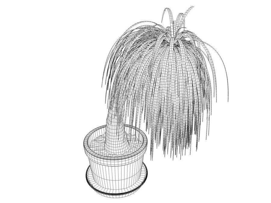 Palm Tree Plant Pot royalty-free 3d model - Preview no. 3