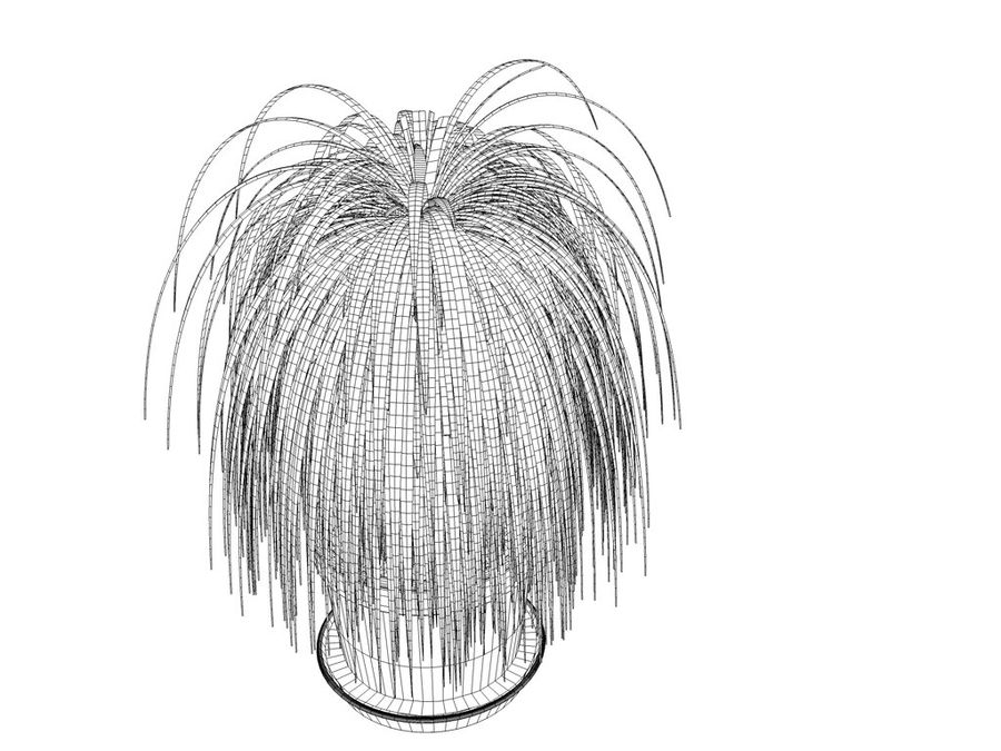 Palm Tree Plant Pot royalty-free 3d model - Preview no. 9