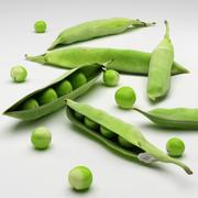 peas 3d model