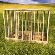 cage pour animaux texturée 3d model