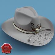 Cowboy Hat V6 3d model