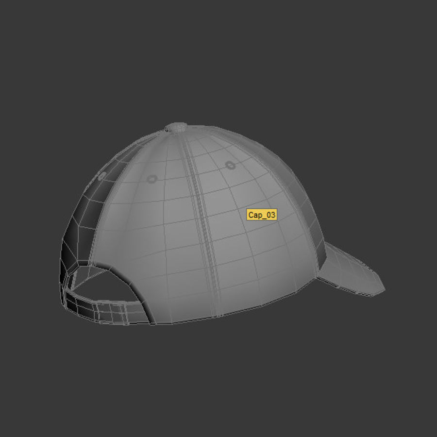 Cap Collection royalty-free 3d model - Preview no. 25