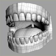 人体牙龈 3d model