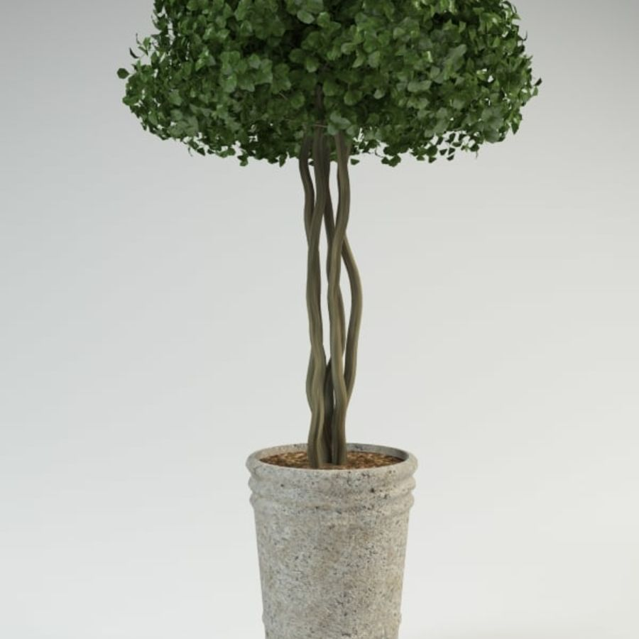bush shrub(1) royalty-free 3d model - Preview no. 1