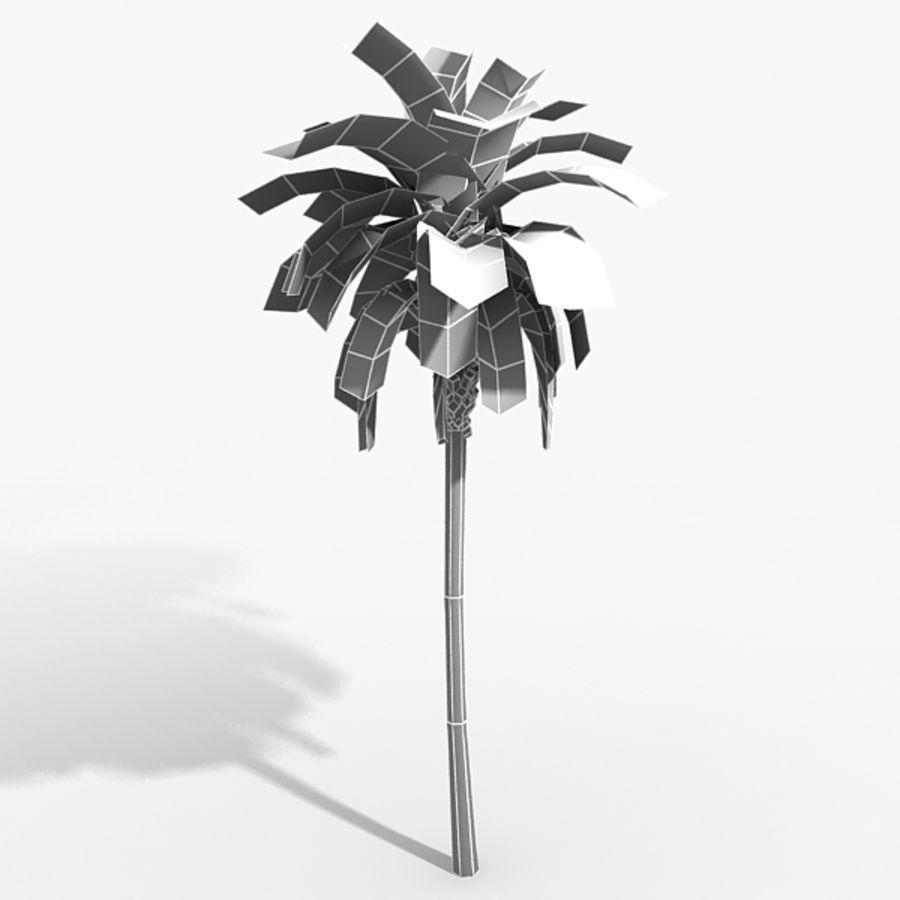 植物のやしフェニックス royalty-free 3d model - Preview no. 2