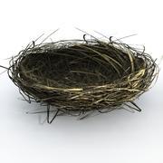 Nest 3d model