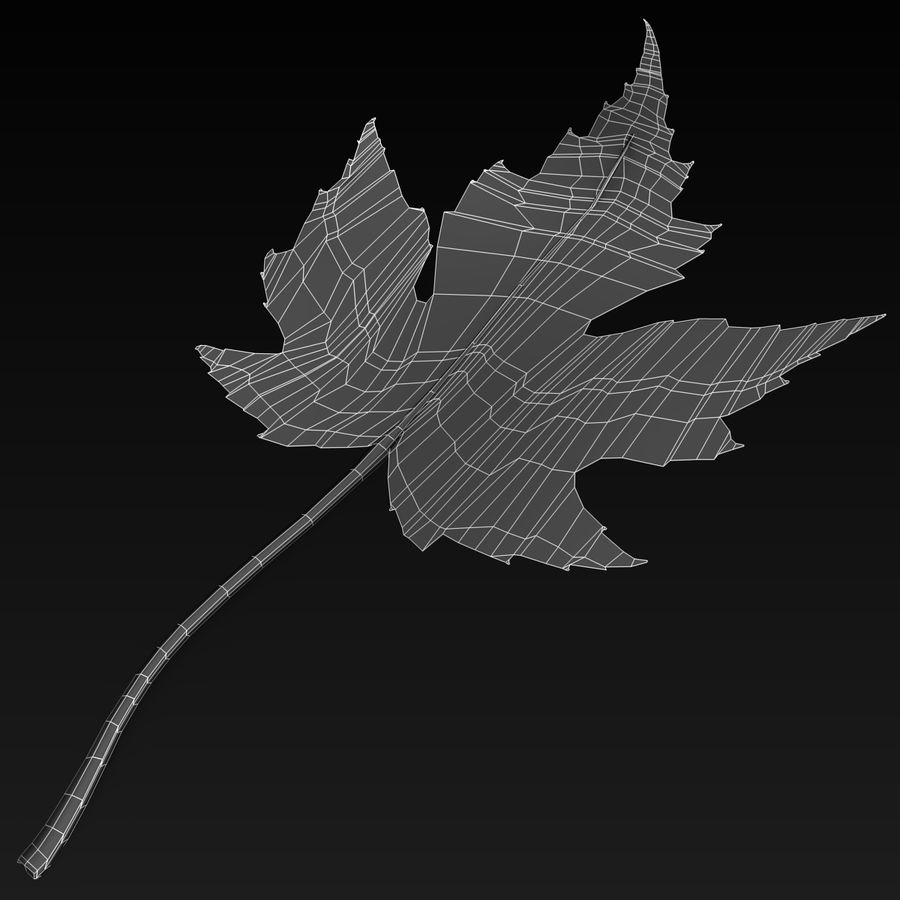 Fall Leaf royalty-free 3d model - Preview no. 4