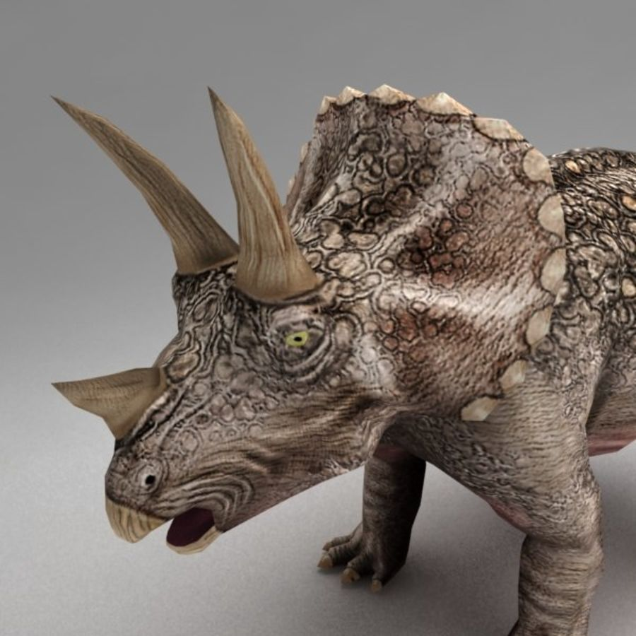 Triceratops animated royalty-free 3d model - Preview no. 4