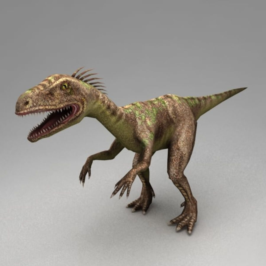 Raptor animated royalty-free 3d model - Preview no. 2