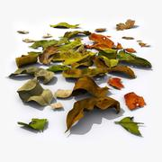 Feuilles mortes 3d model