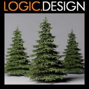 Árvore de abeto 3d model