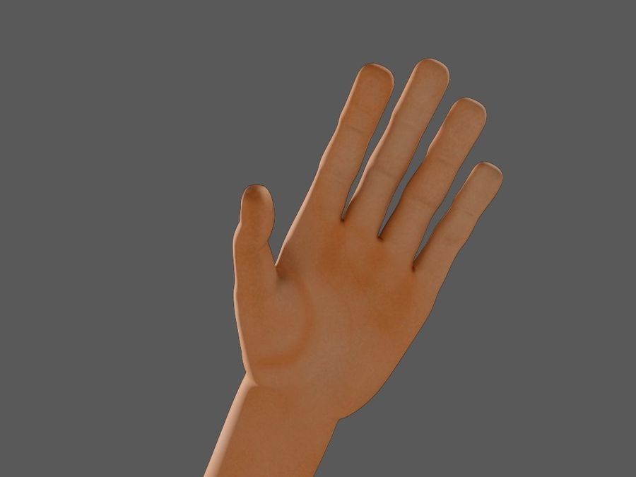 Arm Hand royalty-free 3d model - Preview no. 3